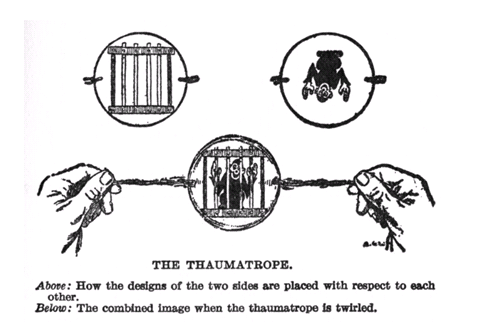 Taumatropo3